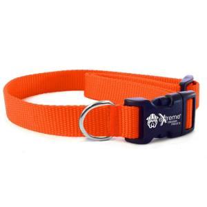 Collar Strap - Bright Orange