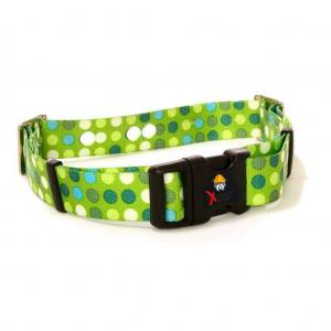 Dog Training Collar Strap - Green